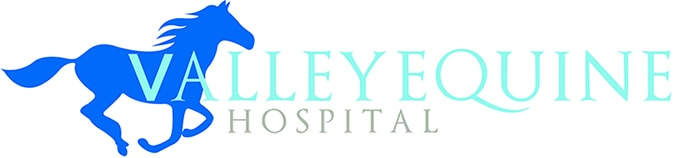 Valley Equine Hospital Logo