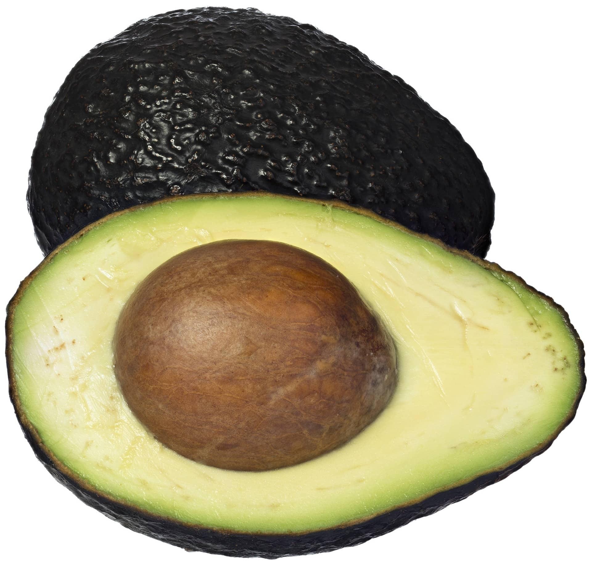 avocado-1287100_1920