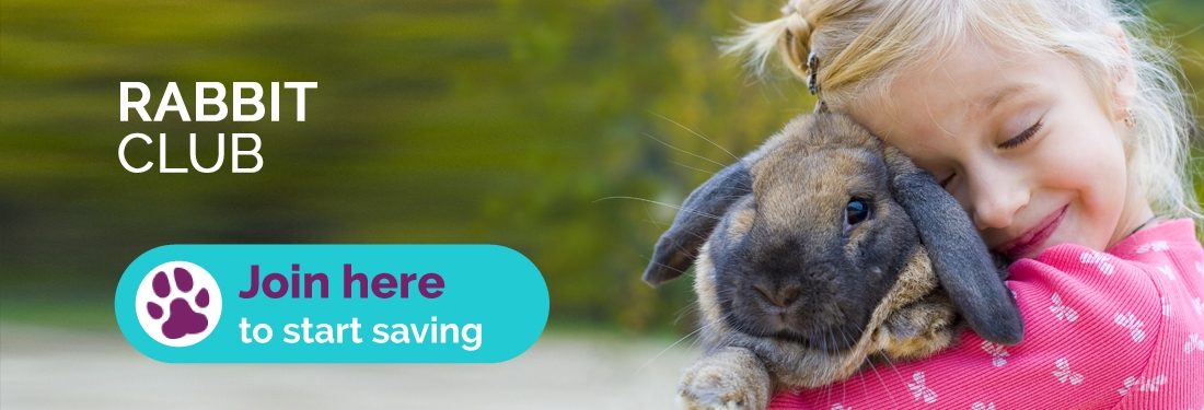 rabbit-club-header