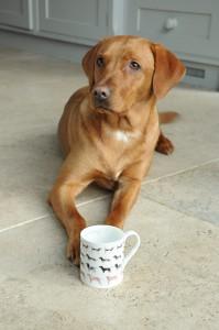 BMWO01 Woof! Standard Mug Lifestyle High Res
