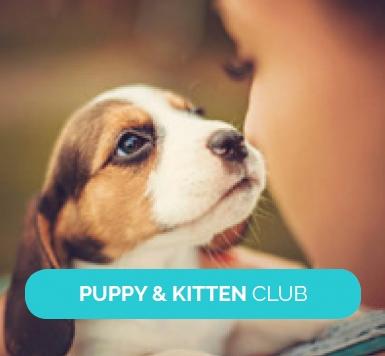 1-puppy-kitten