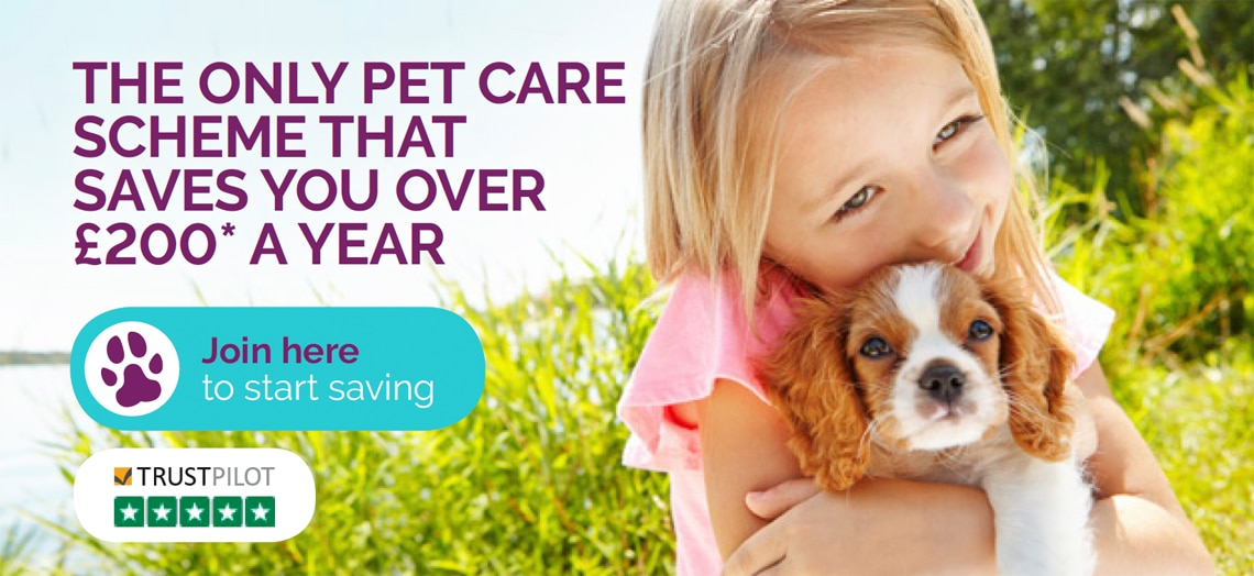 The Healthy Pet Club Simple Cost Effective Preventative Care