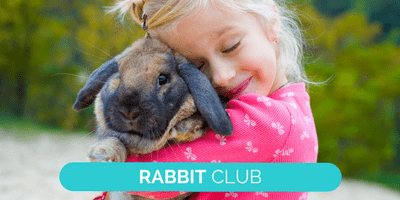 Rabbit club advertising landing page