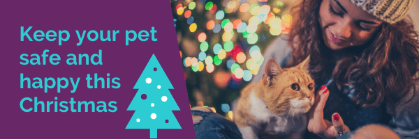 Keep your pet safe and happy this Christmas