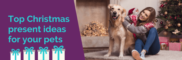 Top Christmas present ideas for your pet