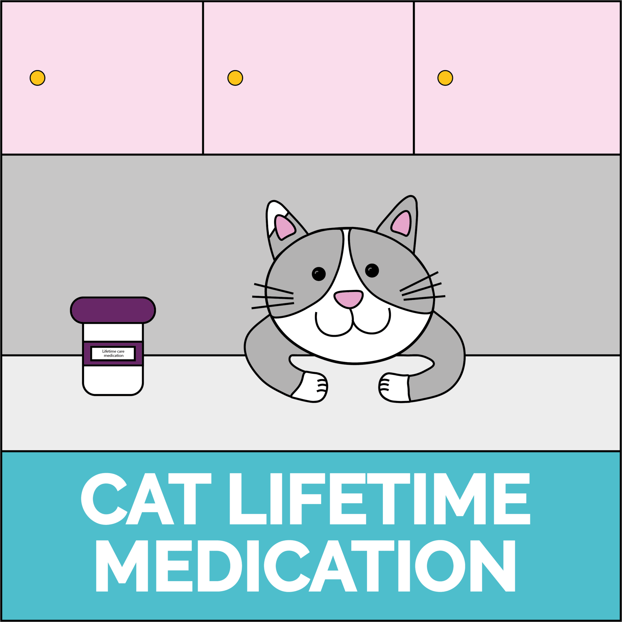Cat lifetime care medication