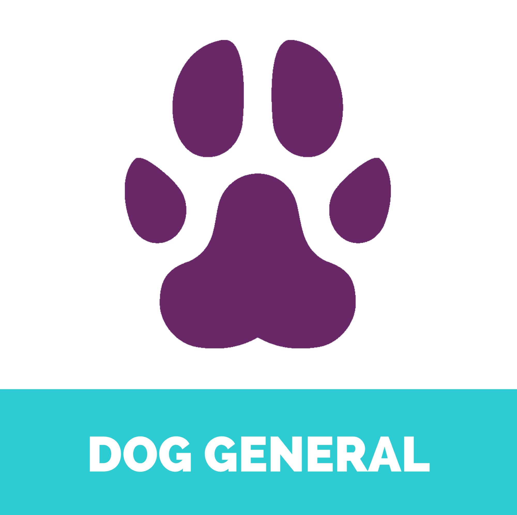 Dog general