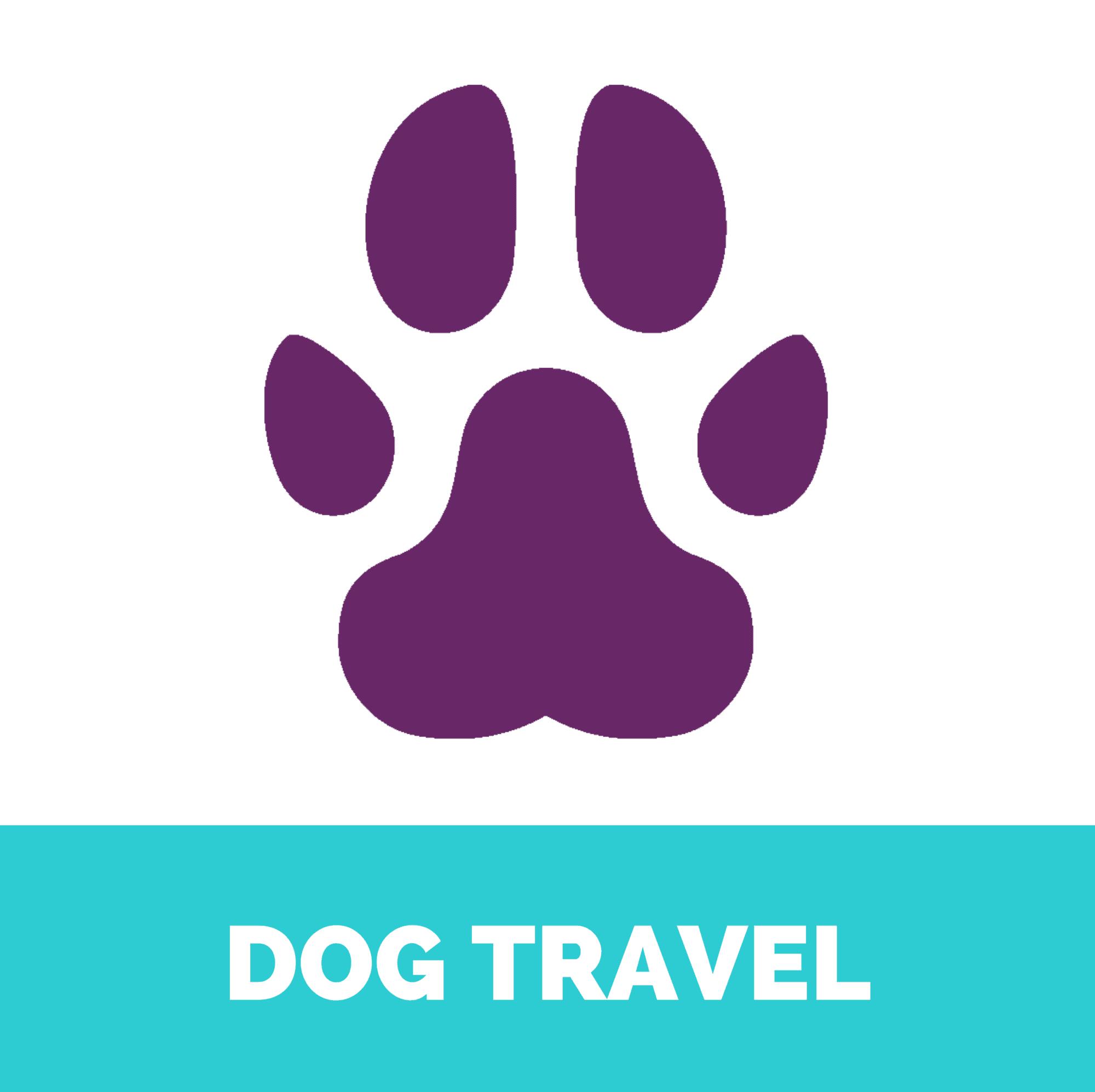 Dog travel