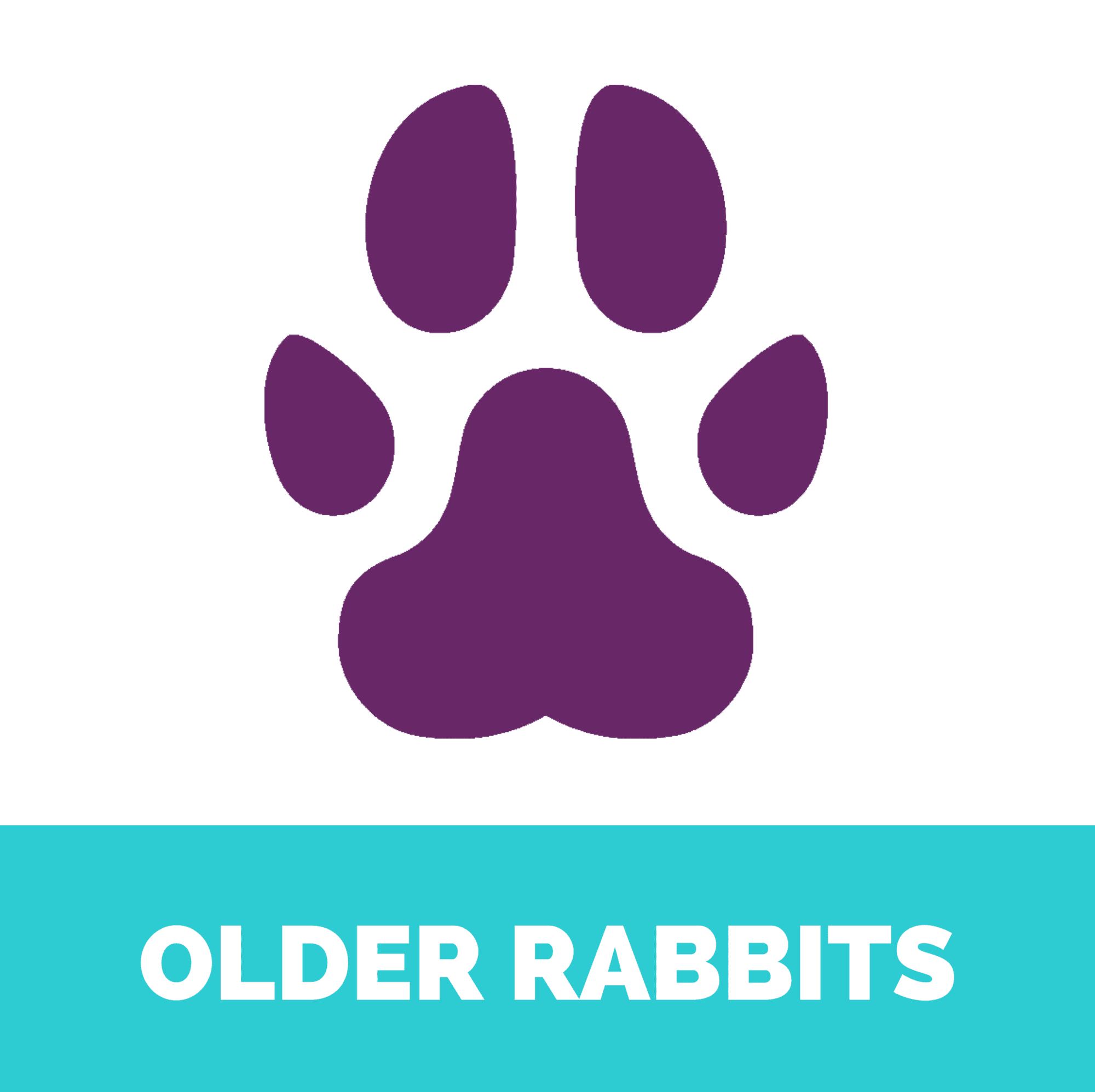 Older rabbits