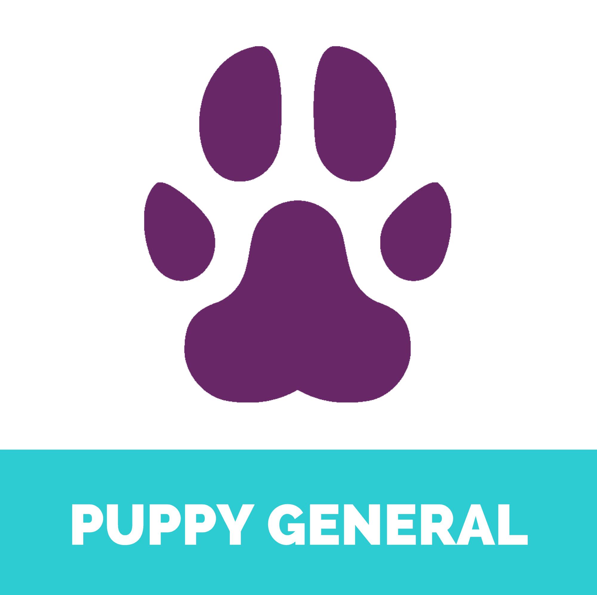 Puppy general