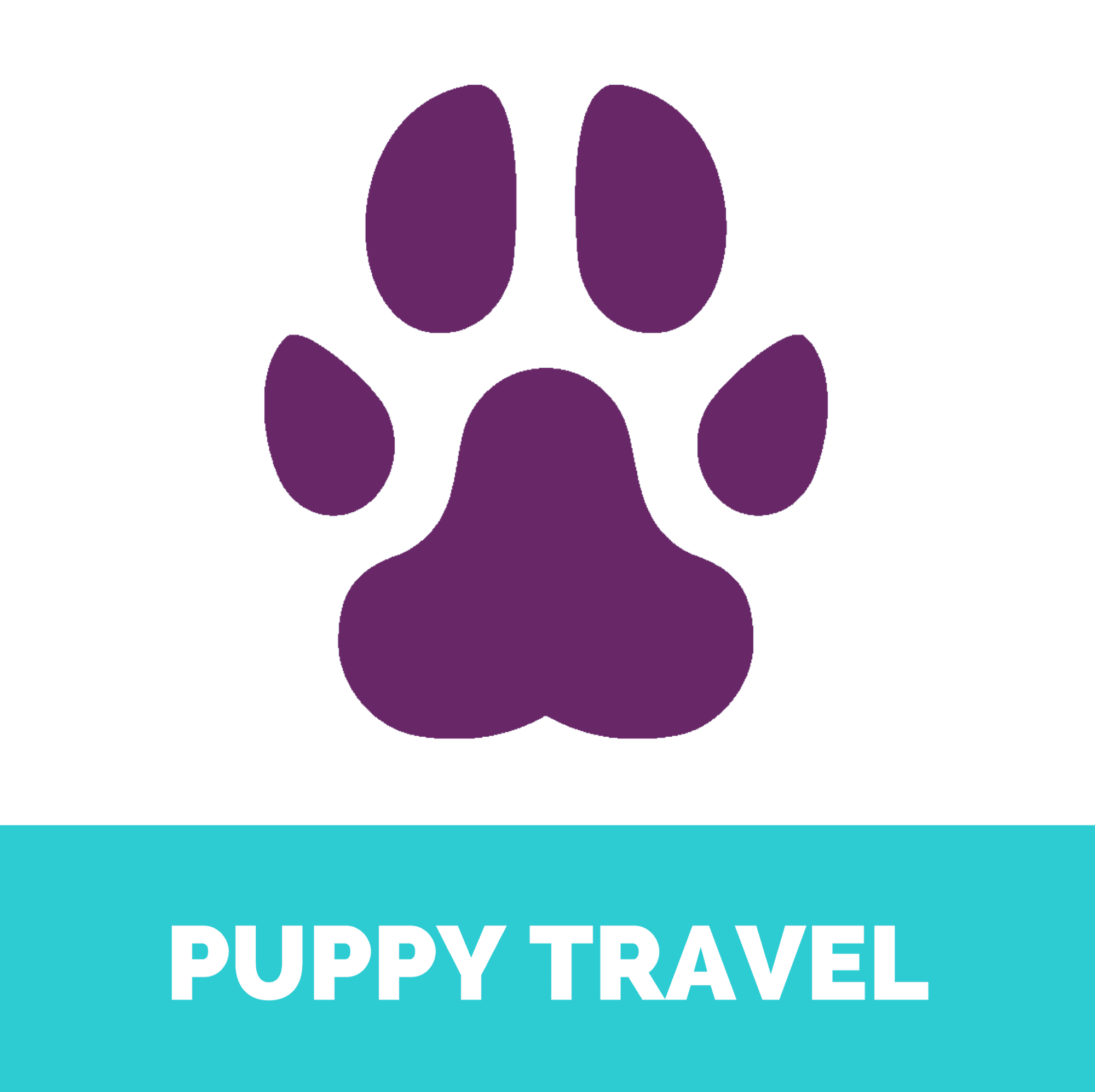 Puppy travel