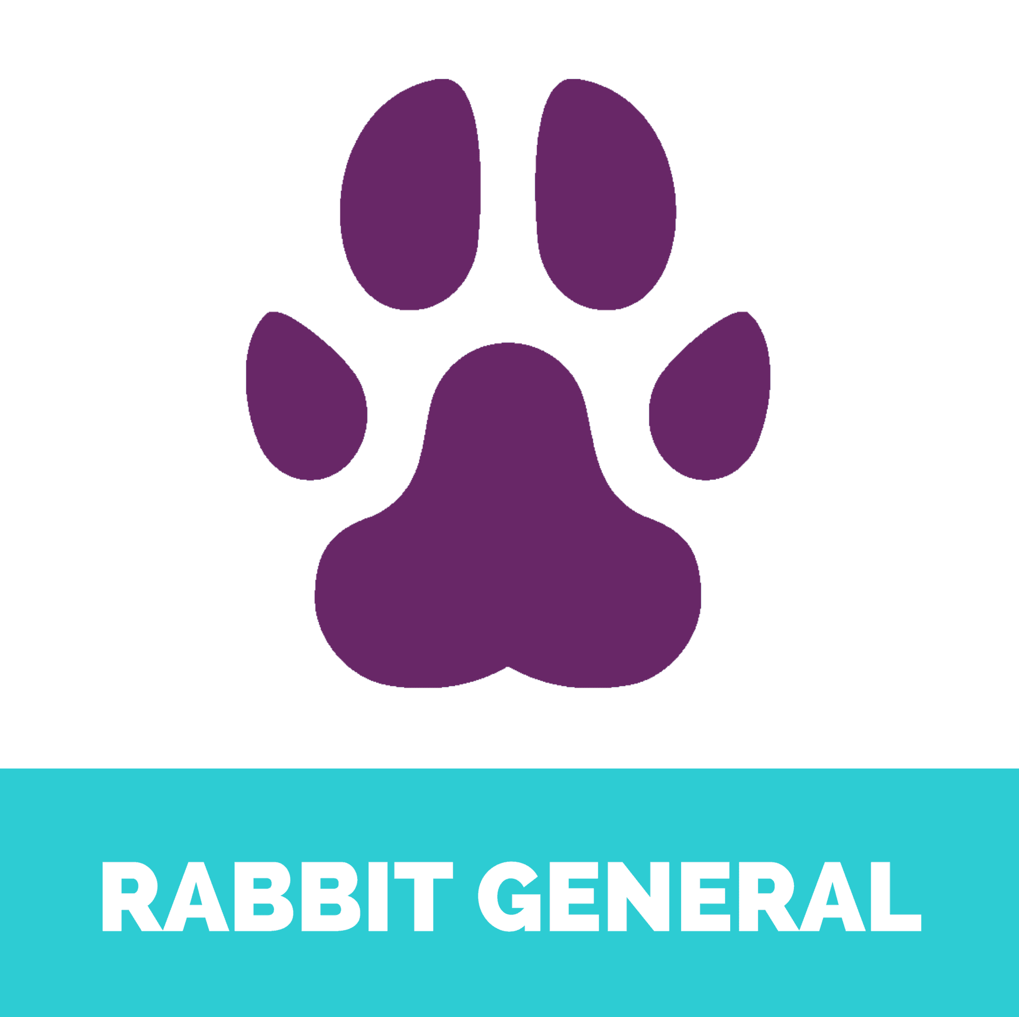 rabbit general