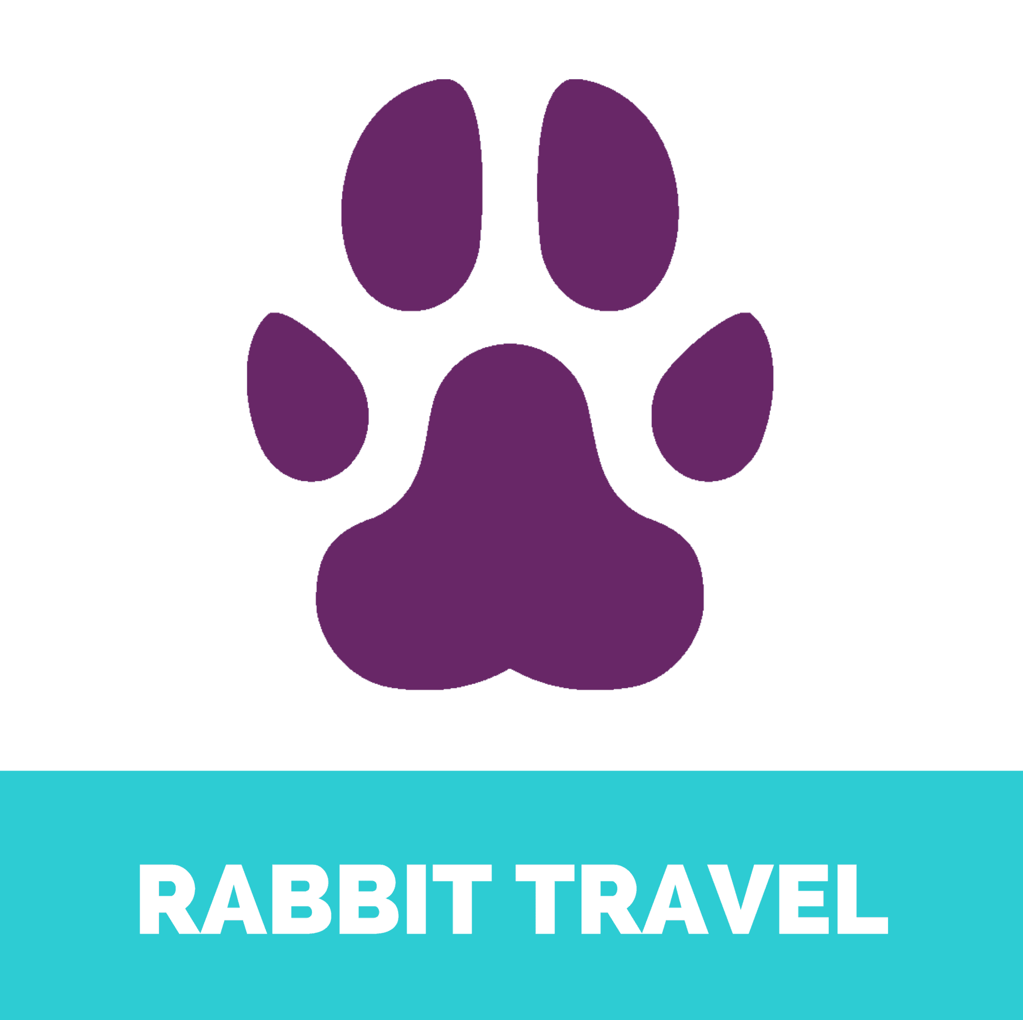 rabbit travel