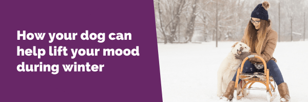 How your dog can help lift your mood during winter