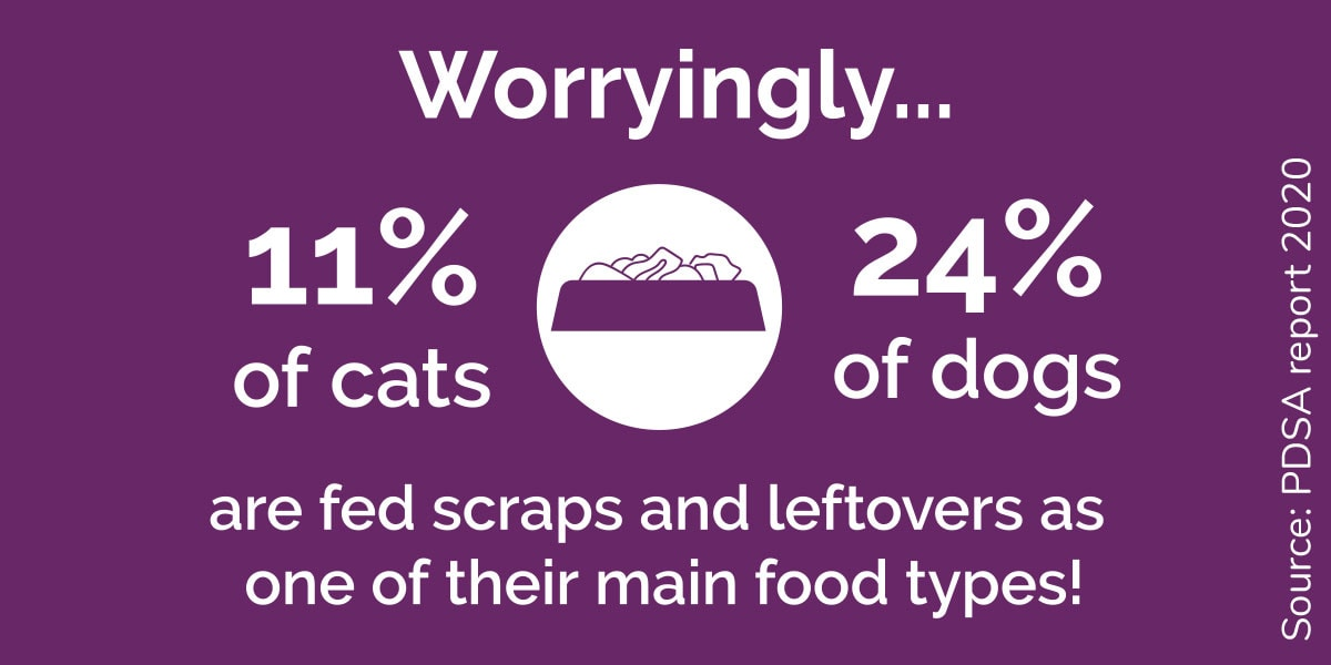 Worryingly... 11% of cats and 24% of dogs are fed scraps and leftovers as one of their main food types!